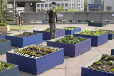 Rooftop garden at South Bank Centre, London ©nickos - Fotolia.com